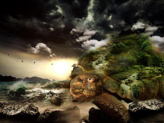 turtle-564733_1280Bonnybbx